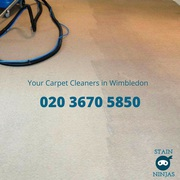 Affordable carpet cleaning in Wimbledon