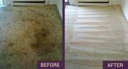 Steam carpet cleaning Sutton