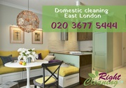 House cleaning in Plaistow,  Leytonstone,  Bethnal Green